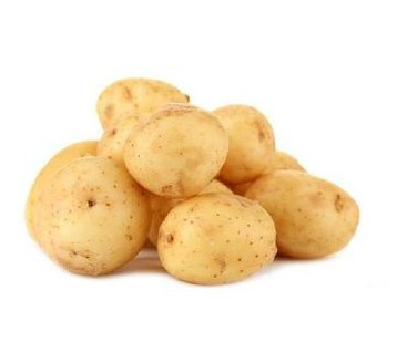 土豆不放冰箱有毒?