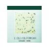 NeoFilm 微生物测试片
