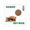 桂枝浓缩粉易溶 厂家生产动植物提取物 定做浓缩浸膏