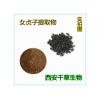 女贞子提取物 天然浓缩烘焙干燥易溶厂家定做浓缩浸膏
