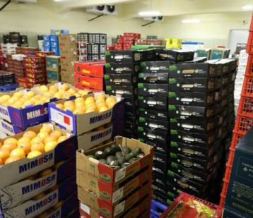 江楠鲜品开启全球水果大批发模式