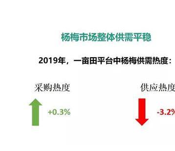 一亩田发布《2019年杨梅主产区市场分析报告》