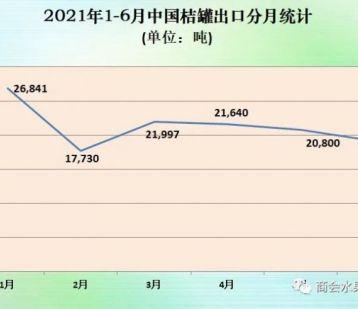 2021年上半年中国桔子罐头出口情况